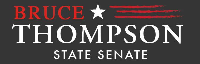 Bruce Thompson Georgia Senate GaPundit