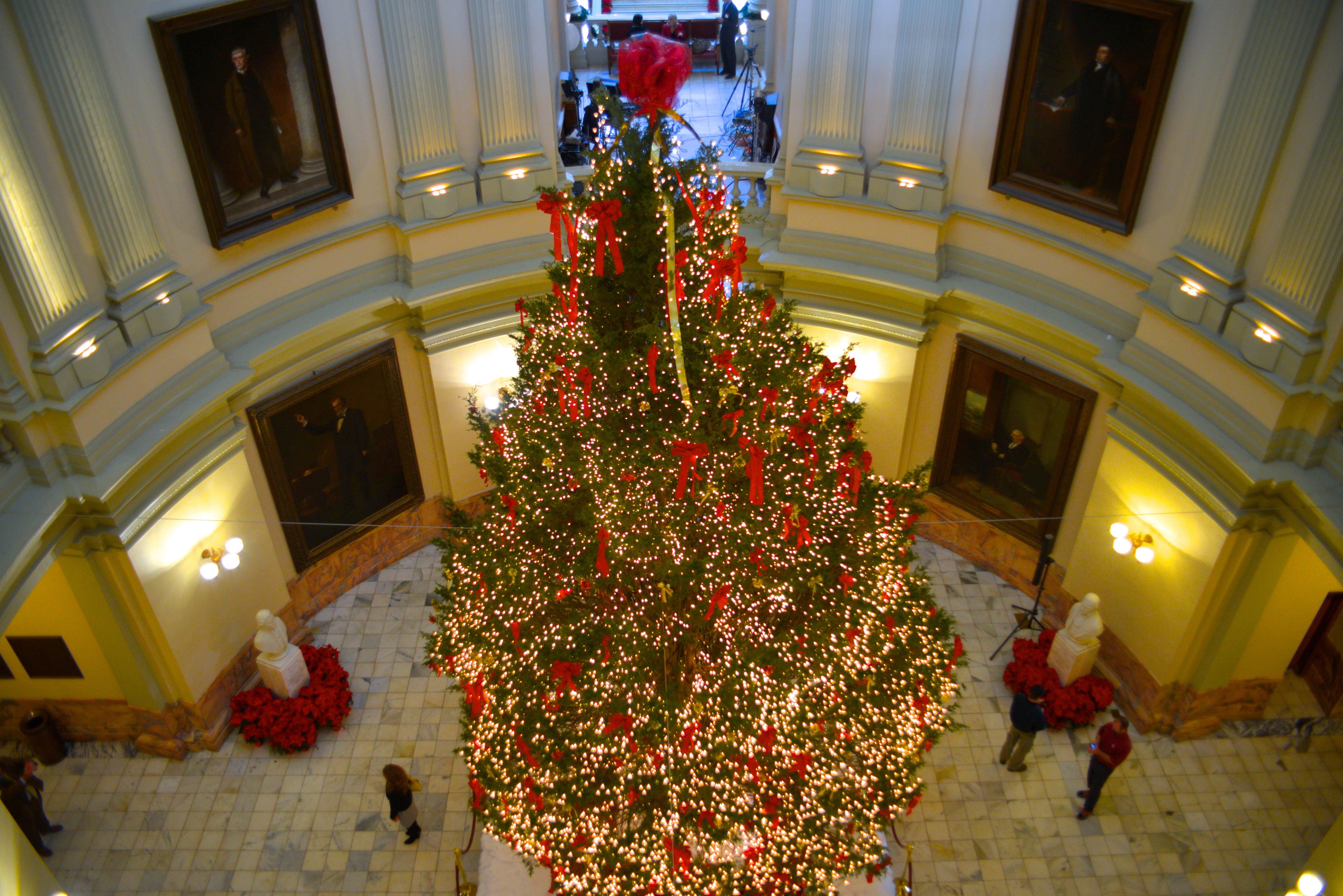 Georgia Capitol Christmas Tree 2013