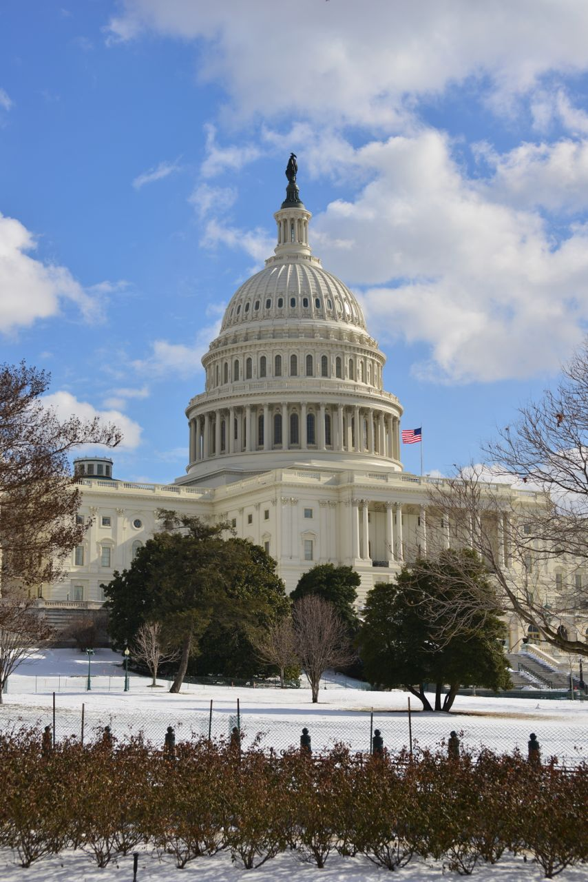 Capitol Snow Large