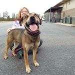 """Adoptable Georgia Dogs for March 18, 2014 """"Short timers"""""""