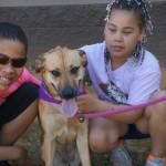 Adoptable Georgia Dogs for April 15, 2014