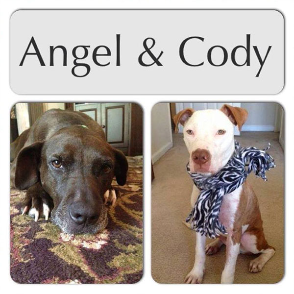 Angel and Cody