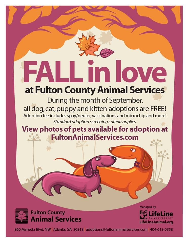 Fulton Animal Services Free