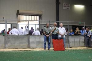 12 Oct Livestock show