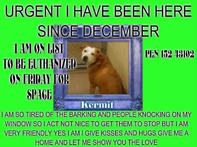 Kermit Gwinnett
