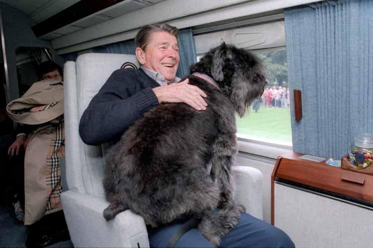 Reagan Lucky