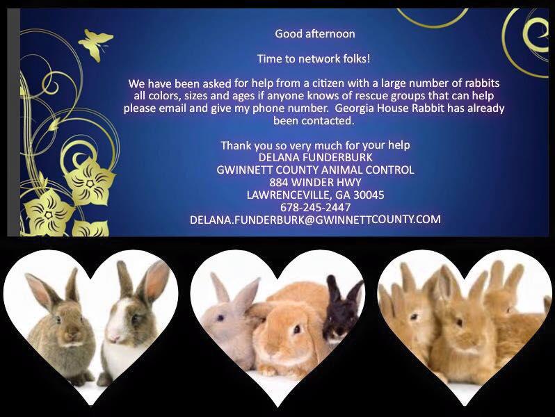 Gwinnett Rabbits