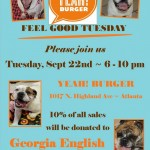 Adoptable Georgia Dogs for September 18, 2015