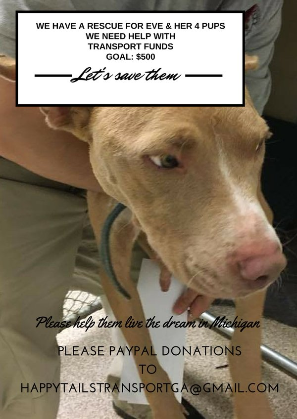 Save Pups Macon