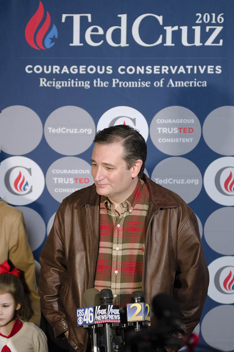 Cruz Portrait Backdrop