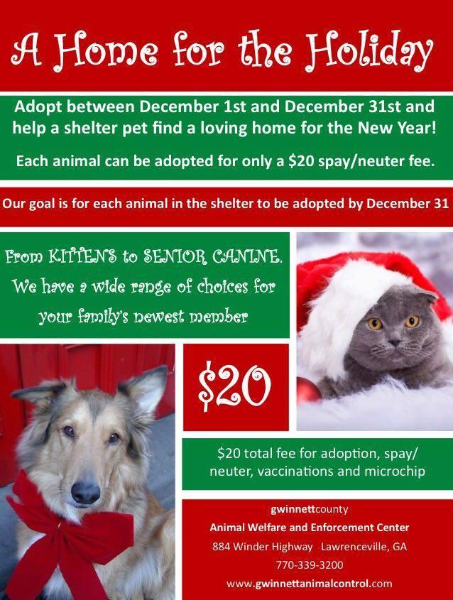 Gwinnett December
