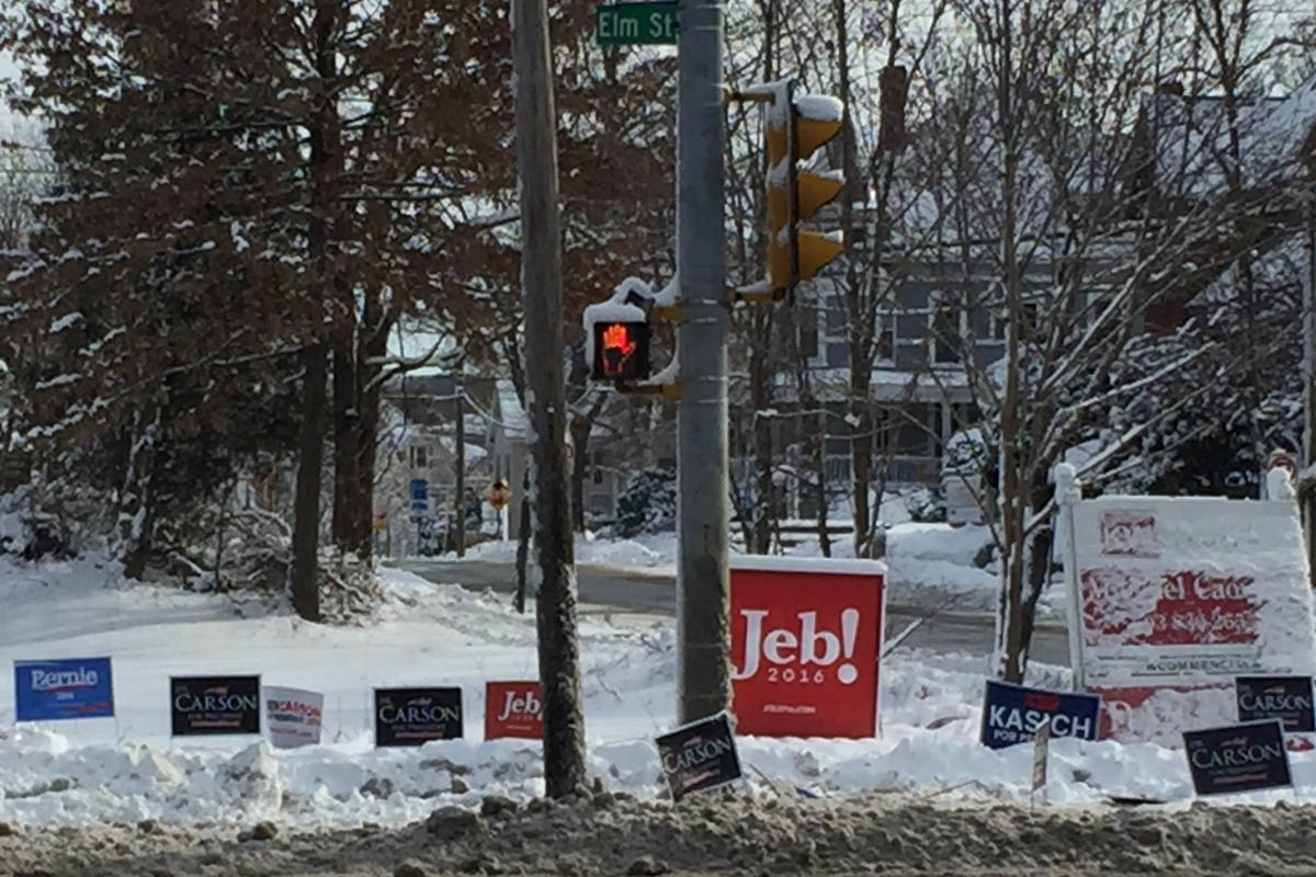 NH Campaign Signs