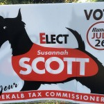 Georgia Politics, Campaigns, and Elections for July 6, 2016