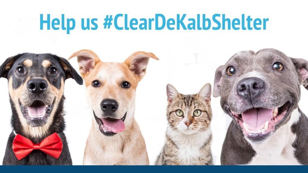 ClearDeKalbShelter