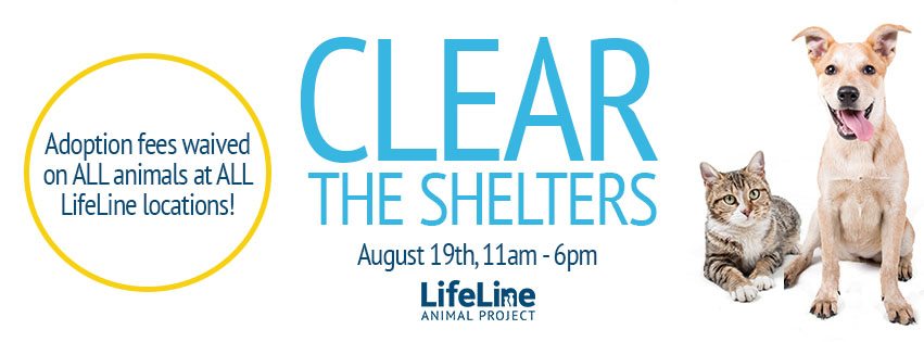Lifeline Clear Shelters