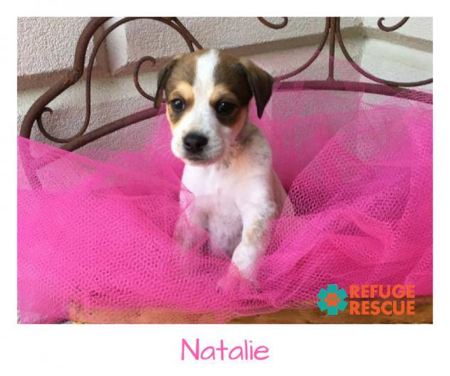 NatalieRR