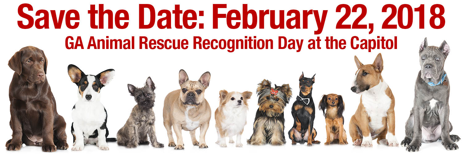 Save the Date Rescue Day