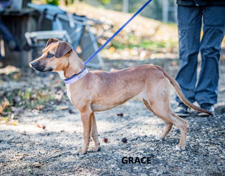 Grace Washington Wilkes Humane