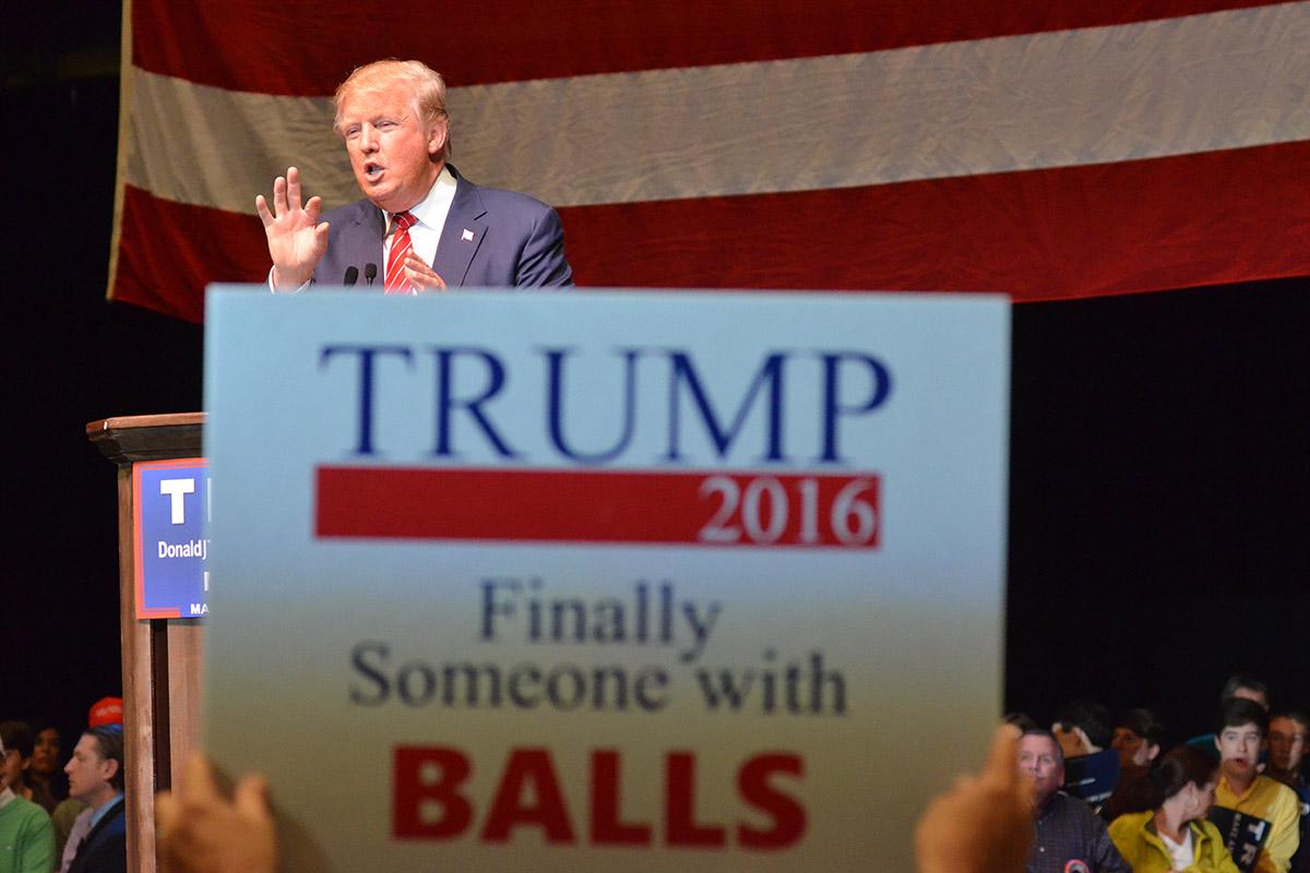 Trump Balls Sign